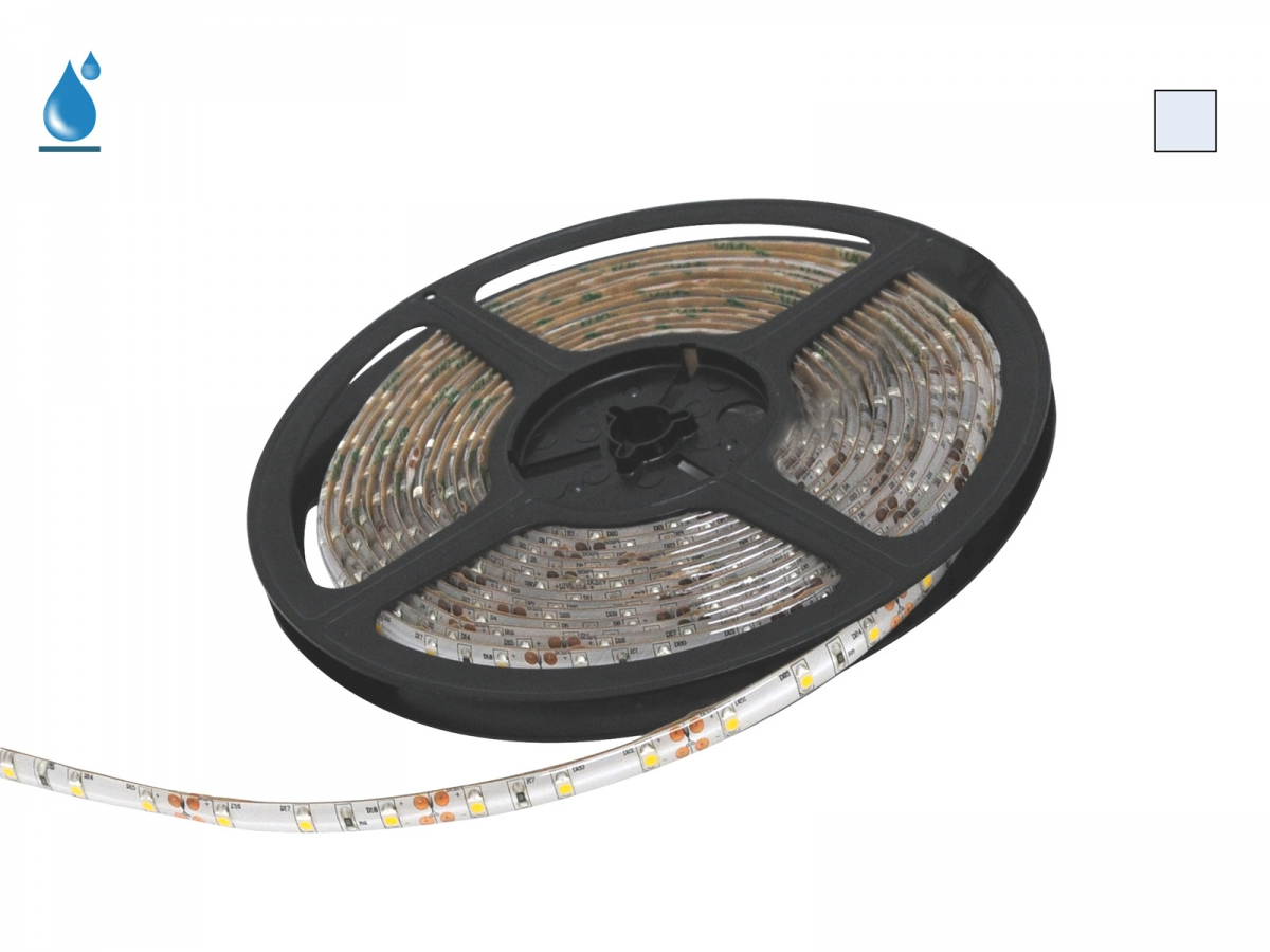 5m LED Stripe kaltweiß 12Vdc 4,8W 290lm/m 60LEDs/m IP54 schnell ...