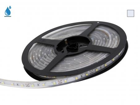 LED Stripe kaltweiß 12Vdc 4W/m 290lm/m 60LEDs/m IP67 5,0m
