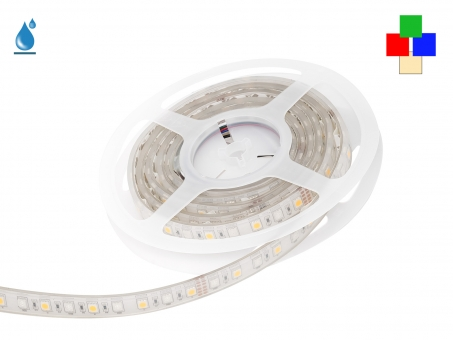 LED Stripe RGB-WW 24Vdc 17W/m 530lm/m 72LEDs/m IP67 5,0m