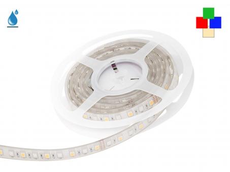2m LED Stripe RGB-WW 24Vdc 17W/m 530lm/m 72LEDs/m IP67