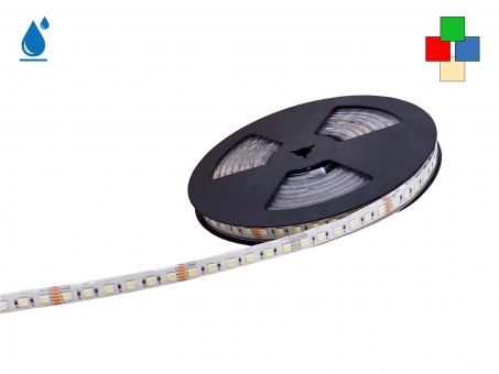 LED Stripe RGB-WW 24Vdc 24W/m 1220lm/m 84LEDs/m 4-Kanal IP67 5,0m